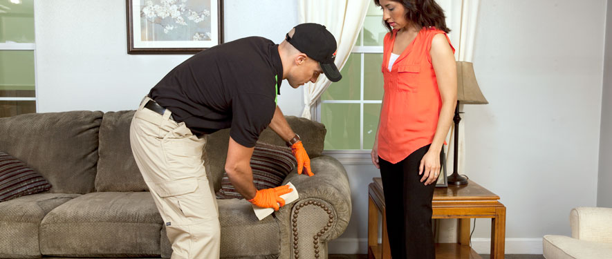 Gulf Breeze, FL carpet upholstery cleaning