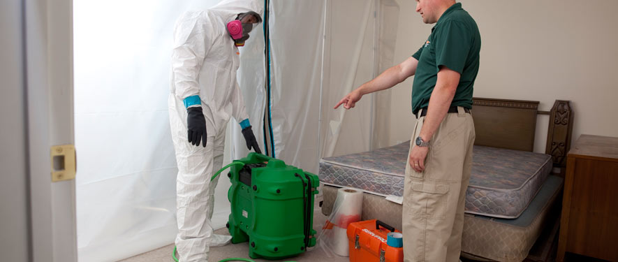 Gulf Breeze, FL mold removal process